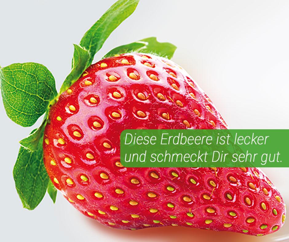 erdbeere-mit-text-neu