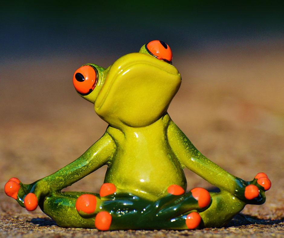 frosch-macht-yoga